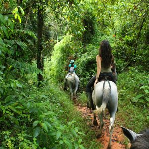 Horseback Riding Drake Bay